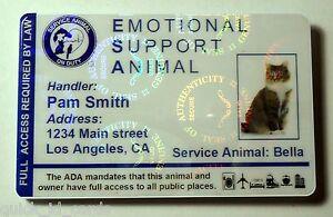 Hologram-Feline-Emotional-Support-Animal-ID-Card-Badge-Service-Cat-ESA-32