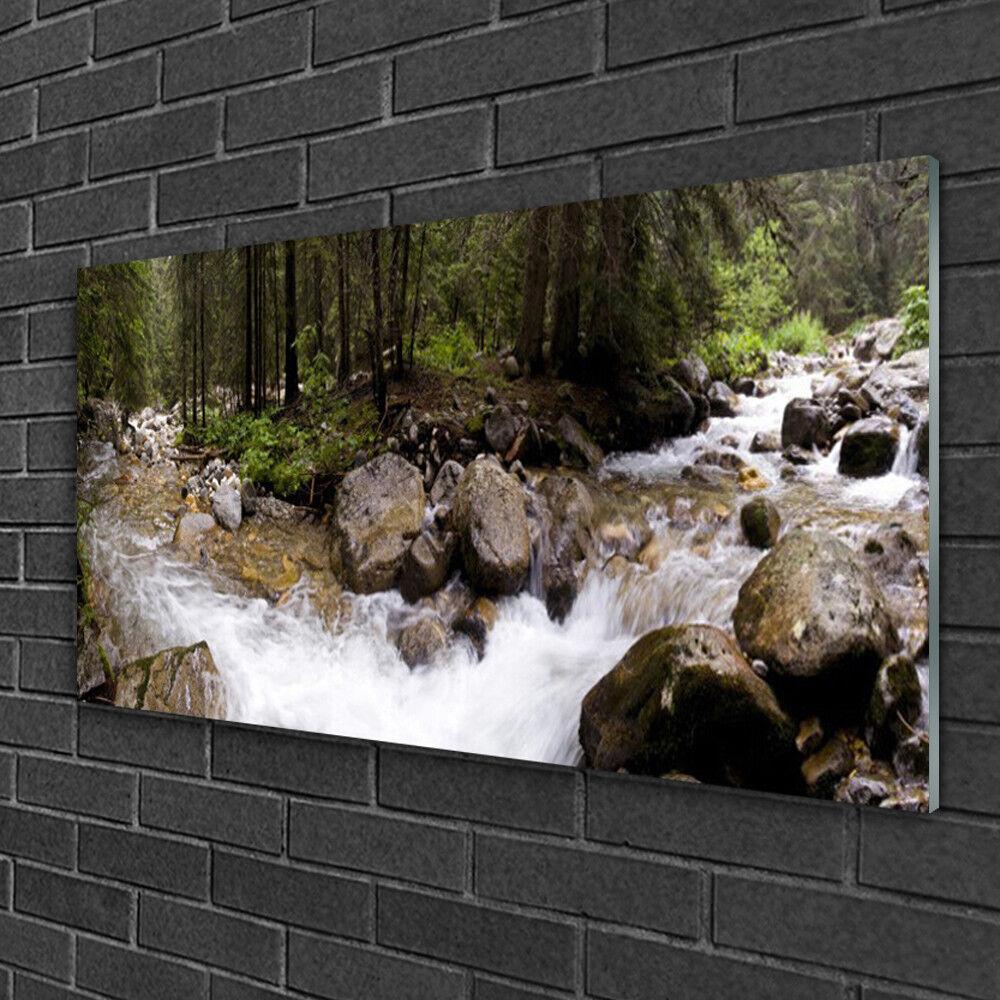 Tableau sur verre Image Impression 100x50 Nature Forêt Ruisseau