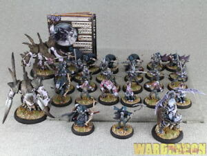 30-amp-50mm-Hordes-WDS-painted-Legion-of-Everblight-Army-Box-d18