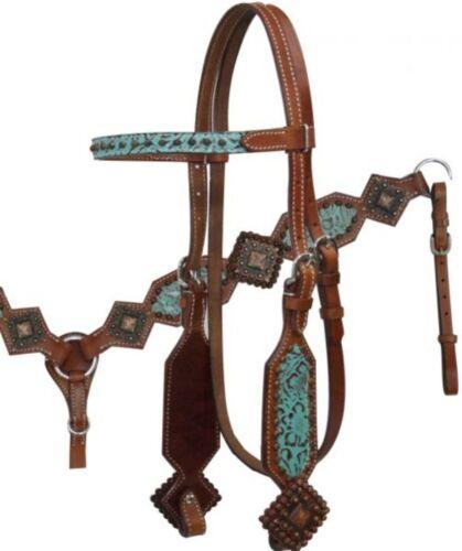 SHOWMAN Bridle /& Breast collar Set avec Turquoise Filigrane Imprimé /& Antique Conchos!