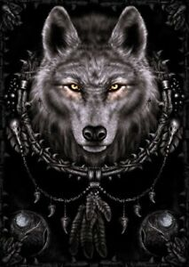 WOLF-DREAMS-NATIVE-AMERICAN-IMAGE-91-x-61-CM-36-x-24-034-ANIMAL-POSTER