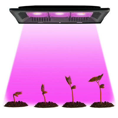 30//50W COB LED Grow light Outdoor Full Spectrum Veg Flower Hydroponic Plant Lamp