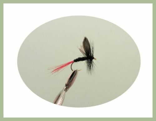 Dry Fishing Flies, nouées Midge 8 Pack Black Ant Red tailed Gnat mixte taille
