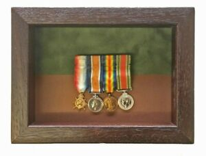Small-South-Irish-Horse-Miniatures-Medal-Display-Case-For-3-4-OR-5-Medals