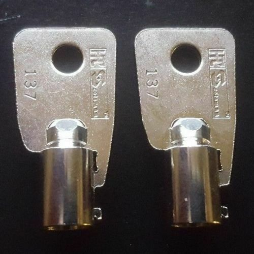 Replacement KEY HMC18501 to HMC18750 2-NEW KEYS FOR Protex Gun Wall Safe Homak