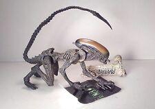 mcfarlane DOG ALIEN basic series MOVIE MANIACS aliens 3 2004 7in. #3203