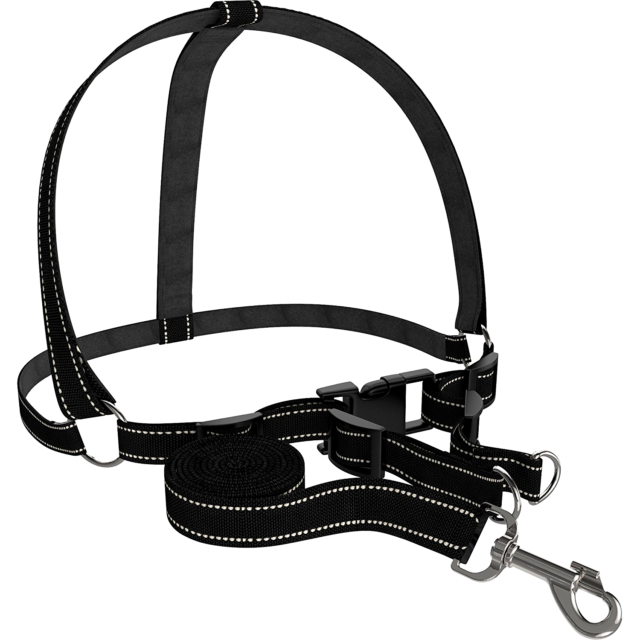 Dog Accessories Harness Collar Leash Heavy Duty Adjustable Durable
