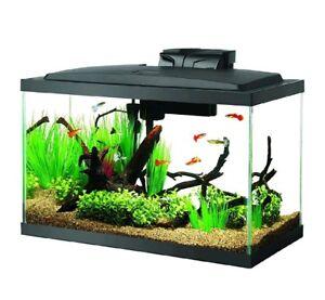 10-Gallon-Fish-Tank-Aquarium-Kit-Glass-Heater-Filter-Light-Air-Pump-Water-Glass