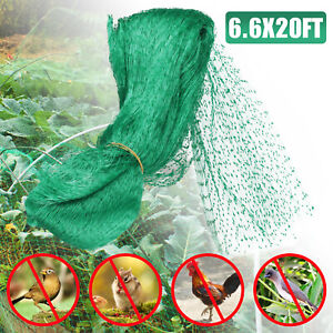 Anti Bird Netting Pond Green Net Protect Tree Crops Plant Fruit Garden Mesh NEW