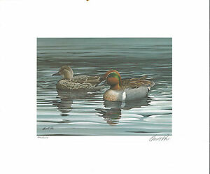 OHIO #3 1984 STATE DUCK STAMP PRINT GREEN WINGED TEAL by Howard Roe