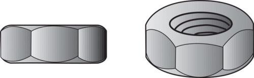 Hillman  10   Zinc-Plated  Steel  SAE  Screw Nut  100 pk