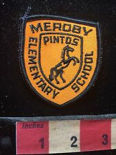 Maine Patch MEROBY PINTOS ELEMENTARY SCHOOL ~ Horse 74K7