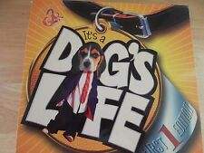 It's A Dog's Life Board Game 4 + Players Teens & Adults Fun! Word Association