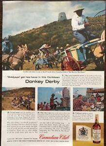 ORIGINAL-1958-Canadian-Club-Whisky-PRINT-AD-Caribbean-Donkey-Derby