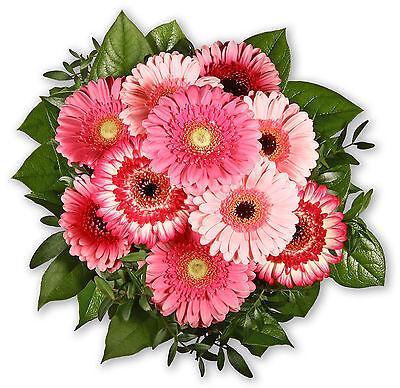 """grußkarte+wunschtermin+frischhalter MöChten Sie Einheimische Chinesische Produkte Kaufen? Blumensträuße Freundlich Blumenstrauß Blumenversand """"gerberagruß"""" Garten & Terrasse"""