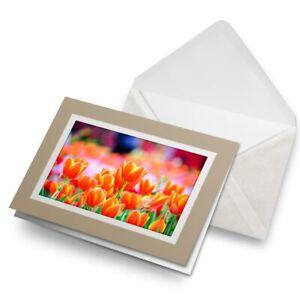 Greetings-Card-Biege-Pretty-Tulip-Flowers-Fun-2342-2