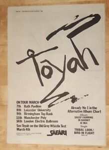 Toyah-tour-1980-press-advert-Full-page-37-x-27-cm-poster