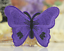 miniature 5 - Butterfly Patches Butterflies Embroidered Iron On Sew On Patch Badges Transfers