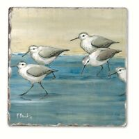 Sandpipers On The Beach Absorbent Tile + Cork Backed Tumbled Coaster Set Of 4