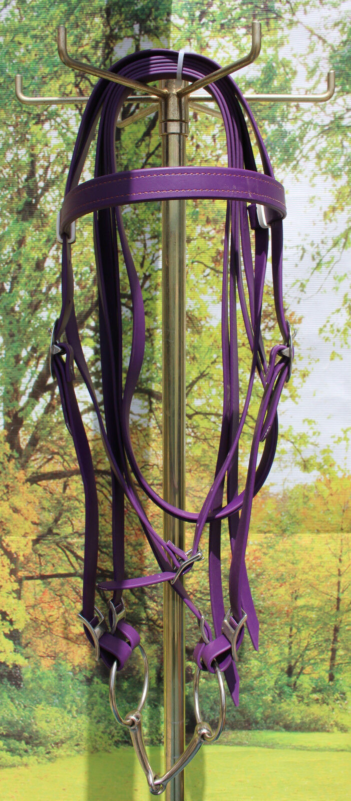 Draft horse beta biothane riding bridle with 6   O ring snaffle PURPLE USA made  factory direct and quick delivery