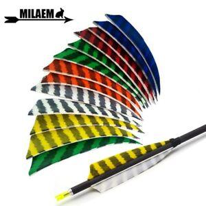 Archery 2 inch Plastic Arrow Vanes Fletches Feather Shaft Bow Hunting W