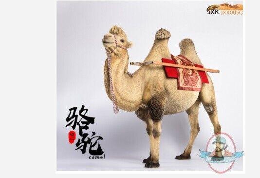 1 6 Bactrian Camel Simulation Animal Model Jxk005 C