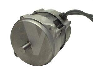 Riello rdb oil burner motor 3002836 now 20071577 for Oil burner motor replacement