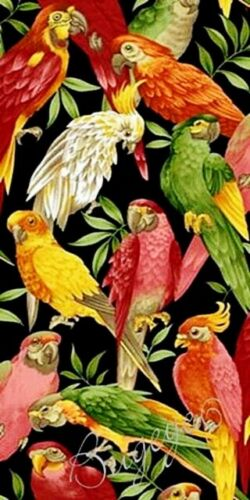 """BTY Cockatoo Craft Upholstery Tropical BIRD Fabric Parrot 60/""""W Macaw"""