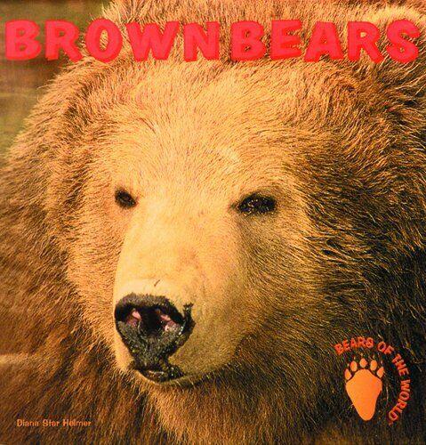 Brown Bears  Bears of the World