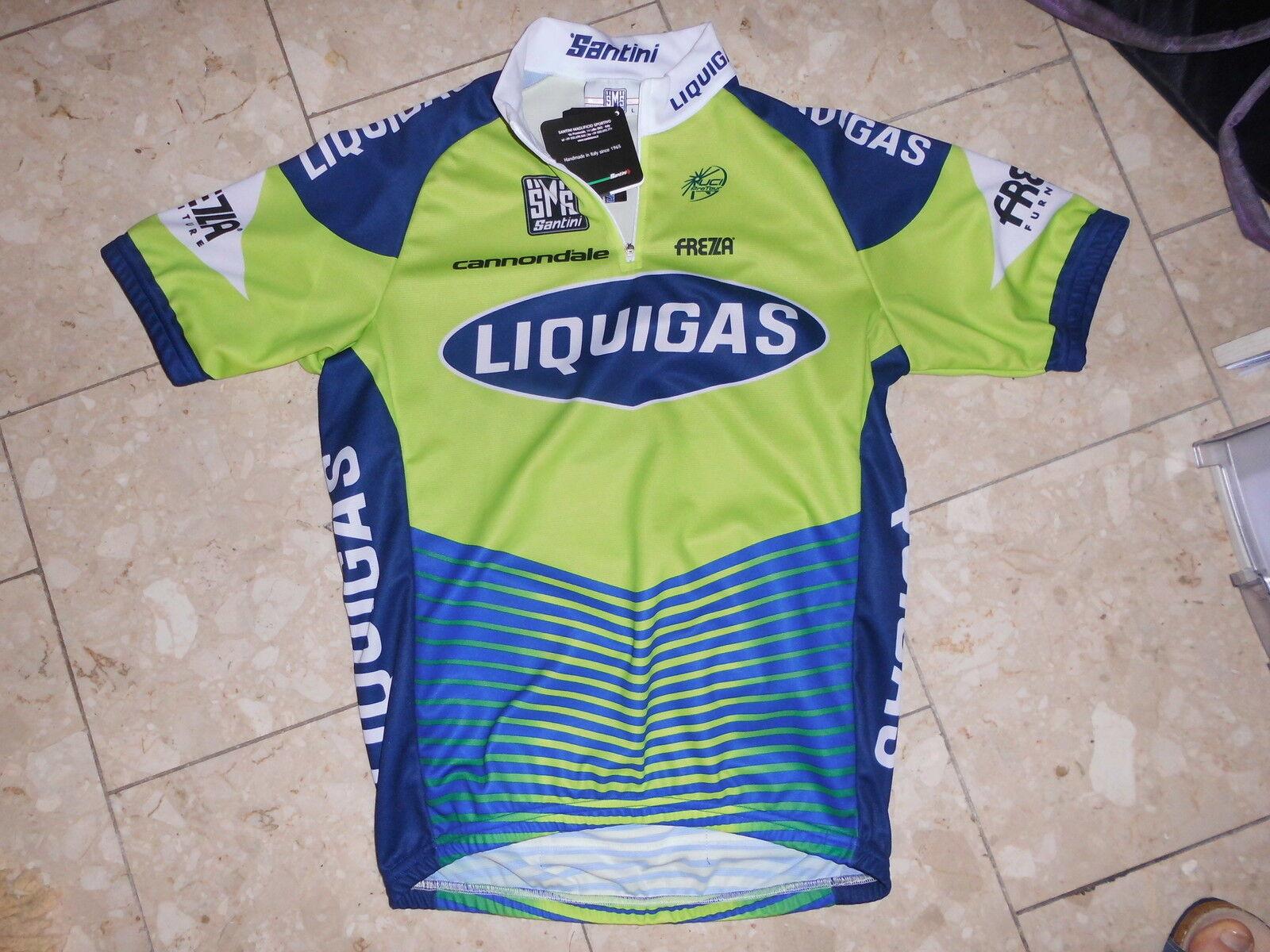 Vélo De Course Maillot brièvement Liquigas Team, SANTINI, CANNONDALE, NEUF