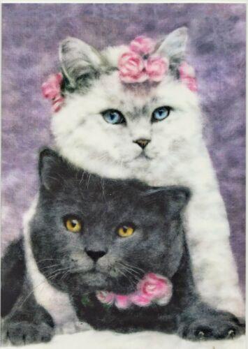 Cat Art Cute Kittens Couple Hug Black White Roses Modern New Russian Postcard