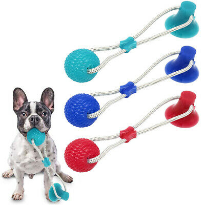 New Gift For Suction Cup Dog Toys Ball Pet Toothbrush Chewing Rubber Dog Toys | eBay