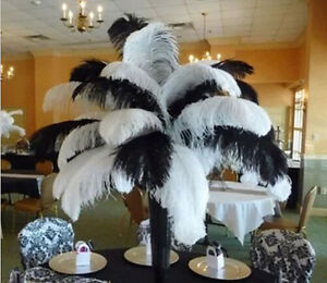 Wholesale-10-200pcs-Natural-Ostrich-Feathers-12-14inch-30-35cm-White-Black