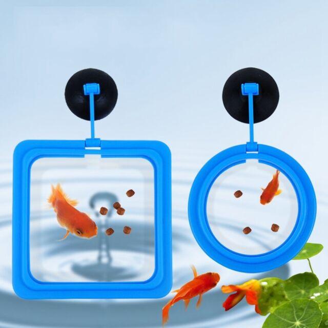 Feeding circle aquarium fish food feeding suspension feeder