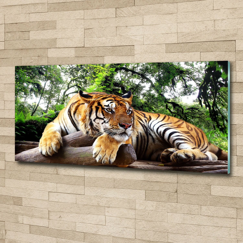 SONDERANFERTIGUNG Wandbild aus Plexiglas® Druck auf Acryl 45x23 Tiger