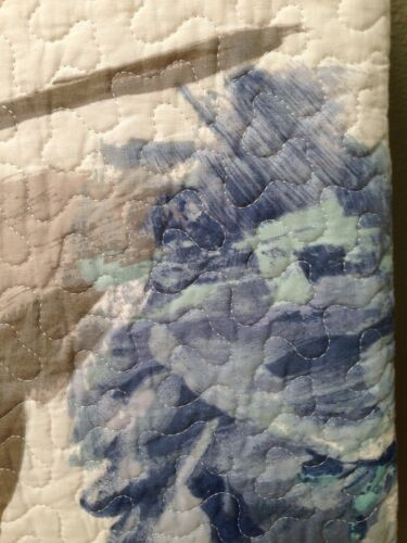 SOHO GORGEOUS WATERCOLOR BLUE ROSES FLORAL AQUA TAUPE FULL QUEEN QUILT SHAMS SET