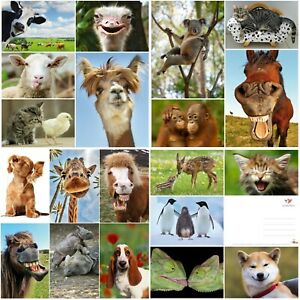 LUSTIGE-TIERE-Set-6-20-er-Tierpostkarten-Set-20-verschiedene-Ansichtskarten