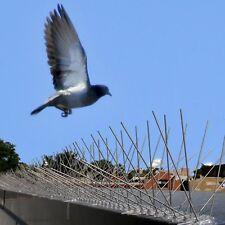 1M Fence Wall Spike Anti-Bird Pigeon Repeller Deterrent Window Defender Perch