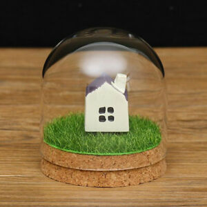 Clear Plant Holder Dome Cover Succulent Terrarium Miniature Landscape 8x12cm