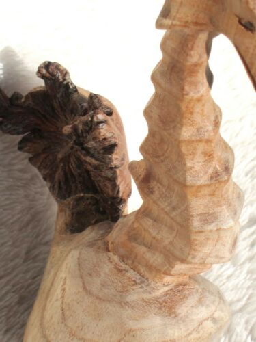 Wooden Seahorse 15cm Parasite Wood Hand Carved Fair Trade