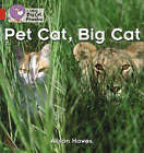 Pet Cat, Big Cat: Band 02a/Red A by Alison Hawes (Paperback, 2006)