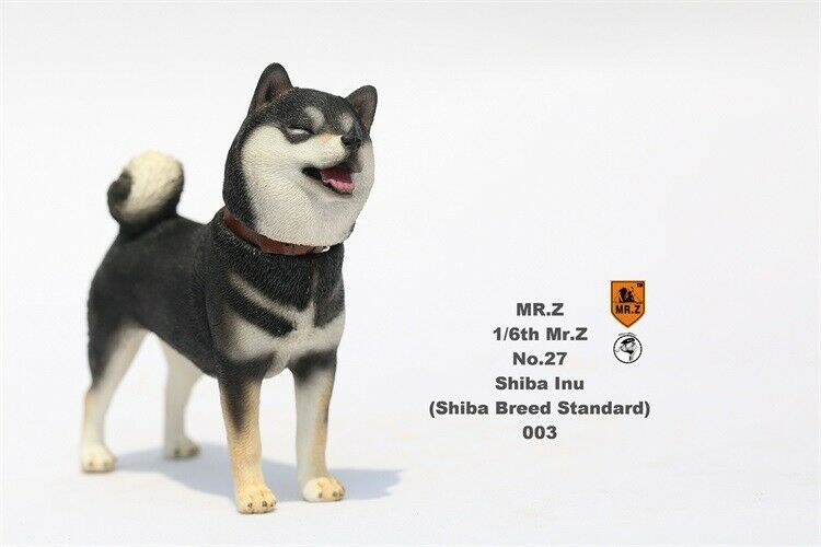 Mr.Z 1 1 1 6th Cute Shiba Inu Dog Pet Animal Model Figure Collector Toy Decor Gift 201ad7