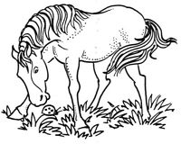 Mounted Rubber Stamps, Scenic Stamps, Western, Horses, Horse, Horse & Ladybug