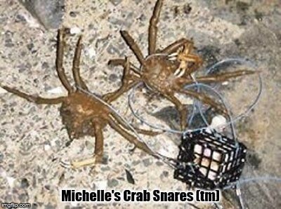 """2.5/"""" x 2.5/"""" Box-type Crab//Lobster Snares Made in Oregon."""