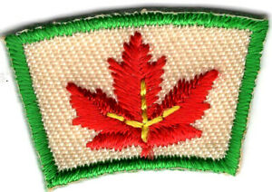 BIRTHDAY CAKE SEGMENT Iron On Patch Small Scouts Boy Girl Cub Camping Aircraft