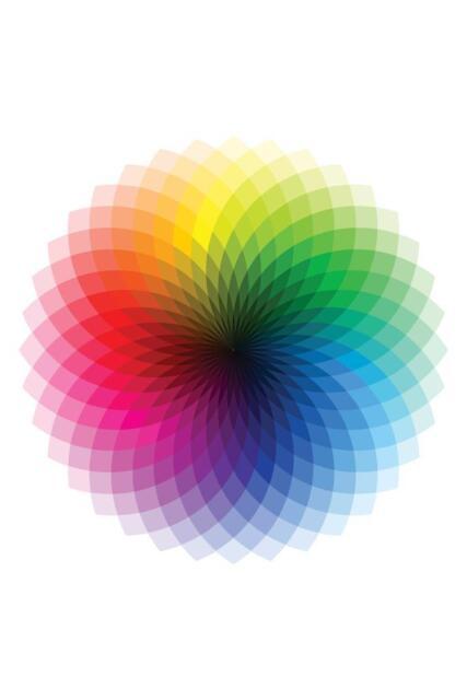 Color Wheel CMYK ROYGBIV Rainbow Spectrum Chart Mural inch Poster 36x54 inch