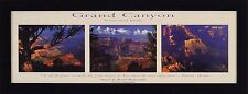 GRAND CANYON NATIONAL PARK Images by Gerald Brimacombe 10x26 FRAMED PRINT