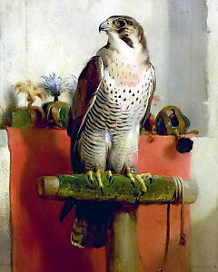8x10  Landseer Art Print Falcon Trained Raptor Bird Prey Hawking Hawk Falconry - <span itemprop=availableAtOrFrom>Cannock, United Kingdom</span> - 8x10  Landseer Art Print Falcon Trained Raptor Bird Prey Hawking Hawk Falconry - Cannock, United Kingdom