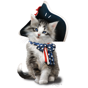 American-Flag-Shirt-Cat-with-Flag-Bow-amp-Hat-Patriotic-4th-of-July-Small-5X