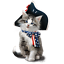 American-Flag-Shirt-Cat-with-Flag-Bow-amp-Hat-Patriotic-4th-of-July-Small-5X thumbnail 1